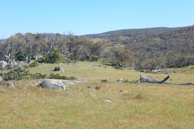 Picture of Lot 1 Stoney Creek Rd, BERRIDALE NSW 2628