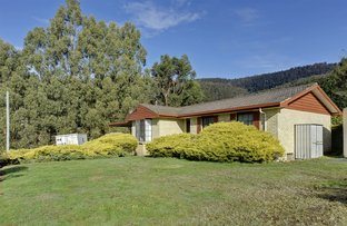 Picture of 192 Lower Swamp Road, Lachlan TAS 7140
