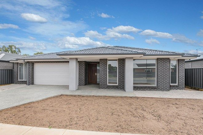 Picture of 31 Tussock Drive, WHITE HILLS VIC 3550