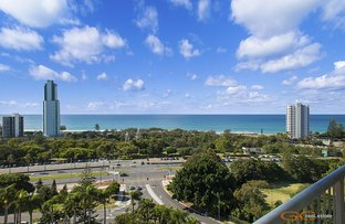 79/5 Admiralty Dr, Surfers Paradise QLD 4217