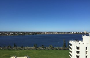 Picture of 122/151 Adelaide Terrace, East Perth WA 6004