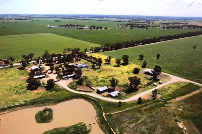 Picture of 1723 Wargin Road, WEST WYALONG NSW 2671