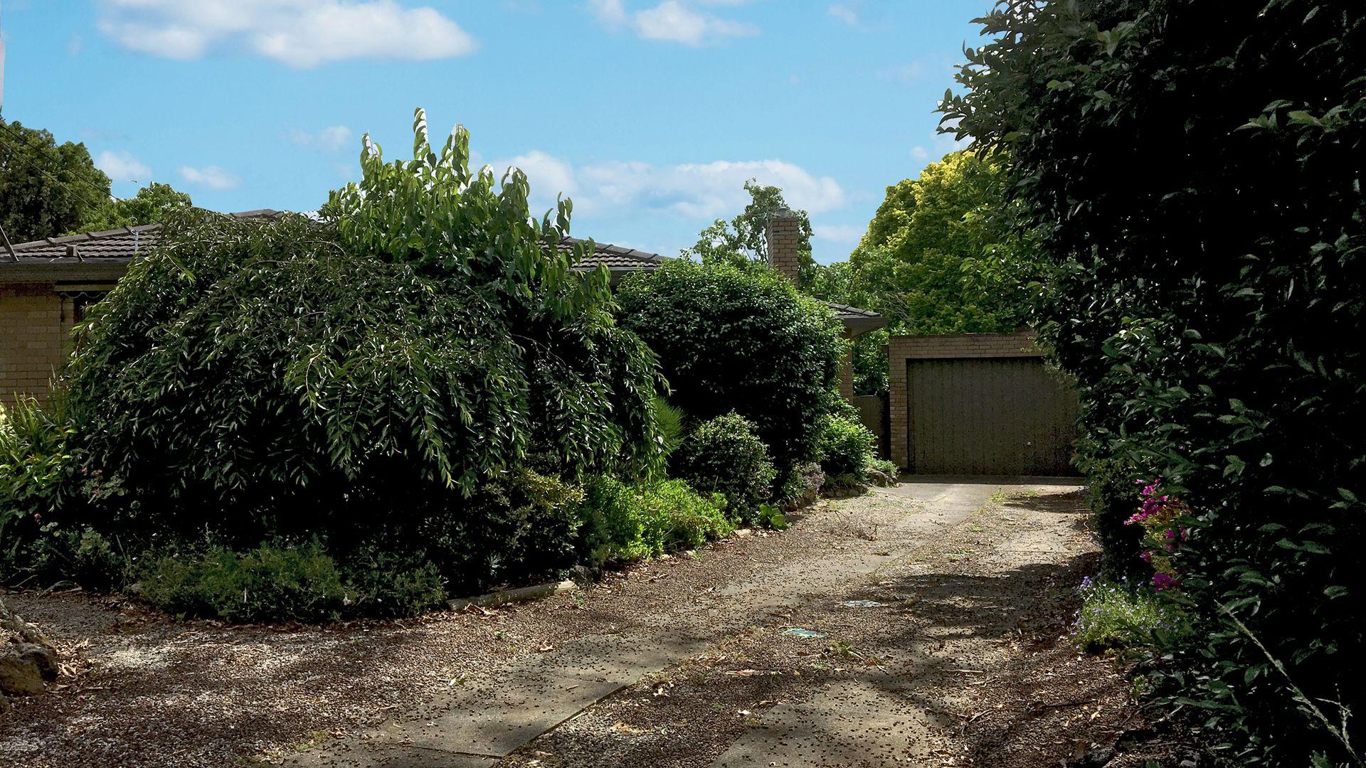 11 Packham Crescent, Glen Waverley VIC 3150, Image 1