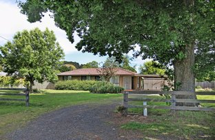 Picture of 41 Trentham Road, Tylden VIC 3444