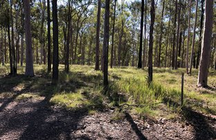 Picture of Lot 515 Wards Road, Glenwood QLD 4570