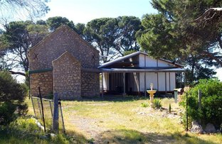 1119 Harry Butler Road, Minlaton SA 5575