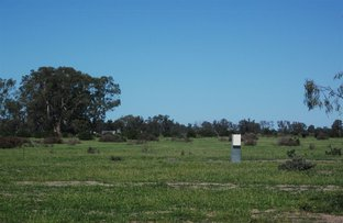 Picture of 520 River Road, Murrabit West VIC 3579