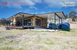 Picture of 668 Ten Mile Road, Deepwater NSW 2371