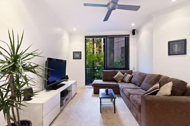 Picture of G8/199 Pyrmont  Street, PYRMONT NSW 2009