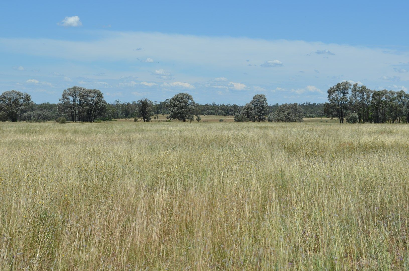 6402 Cecil Plains Road Weir River Qld 4406 House For