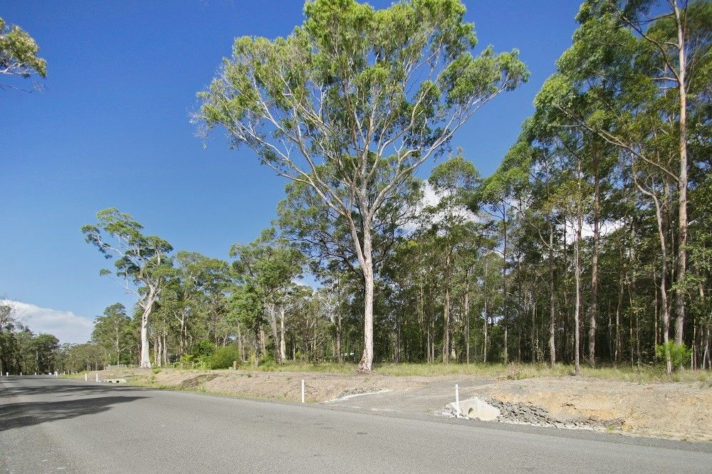 Lot 113 Jerberra Road, Tomerong NSW 2540, Image 1