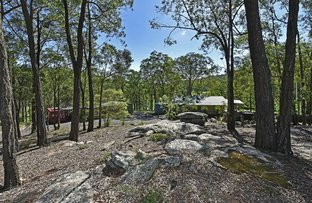 Picture of 374 Dairy Arm Rd, Laguna NSW 2325