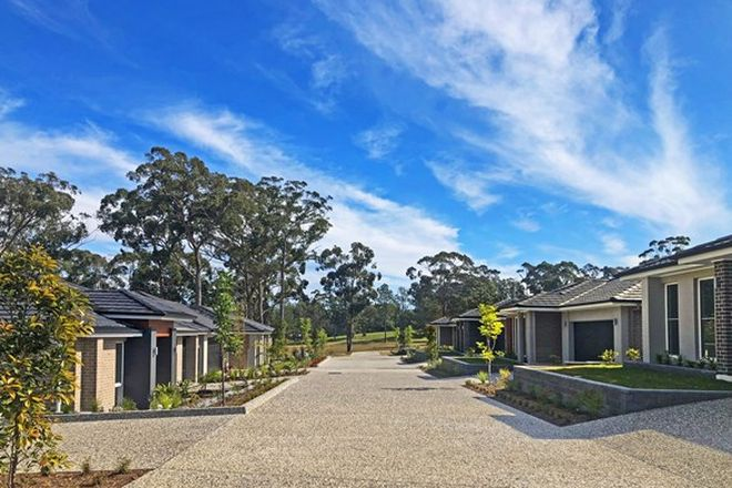 Picture of 23 Quandong Place, KEW NSW 2439