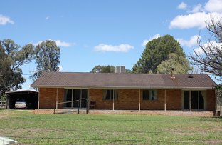 Picture of 1009 Warrumbungles Way, Coolah NSW 2843