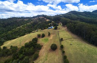 Picture of 488 Greenhills Rd, Bakers Creek NSW 2447