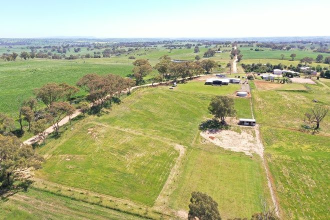 Picture of 497 Wickham Lane, YOUNG NSW 2594