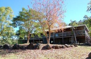 1221B Paddys Flat Road, Tabulam NSW 2469