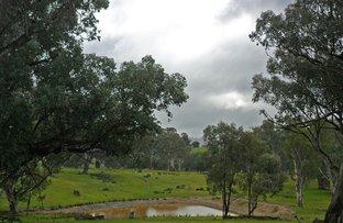 2,38,39/1701 Adelong Road, Tumblong NSW 2729