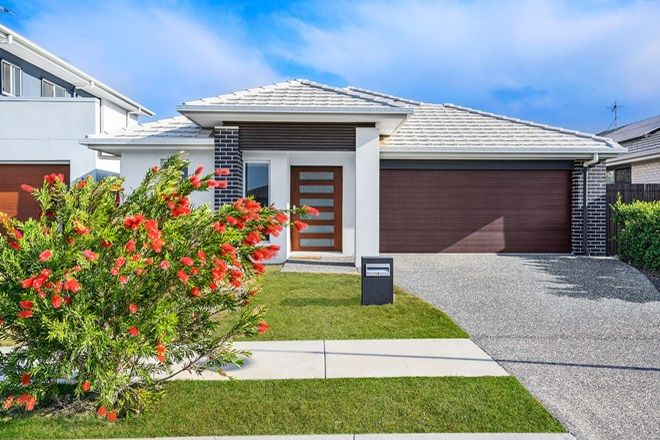 Picture of 19 Crusade Street, NEWPORT QLD 4020