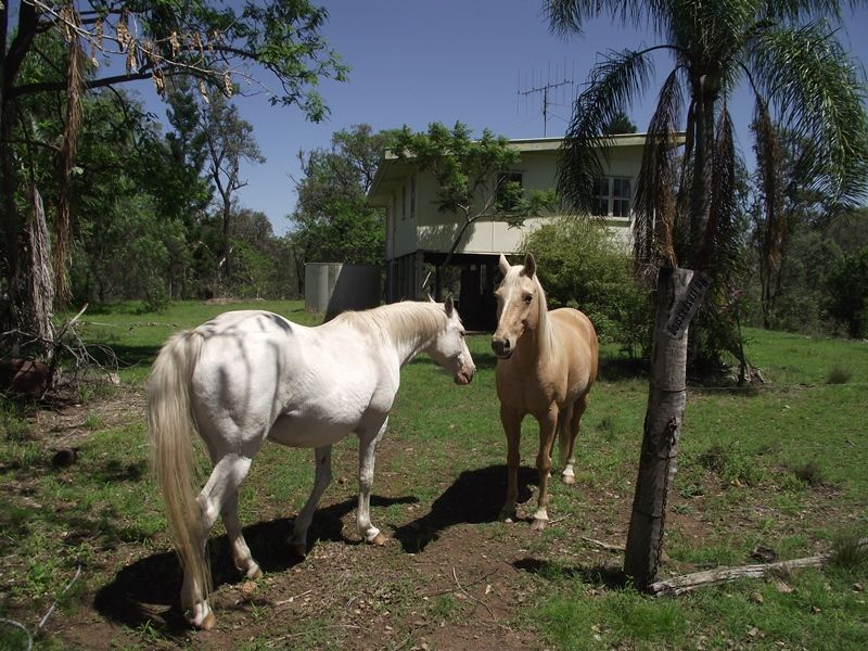 L50 Clune Road, Kilkivan QLD 4600, Image 0