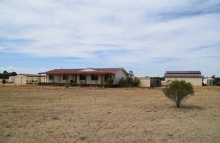 Picture of Jacaranda Flats, 5940 Newell Highway, Gilgandra NSW 2827