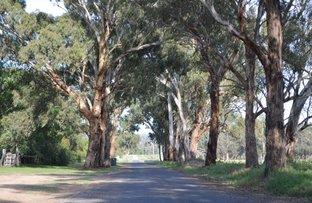 Picture of 39 Mirrabooka Lane, Quirindi NSW 2343