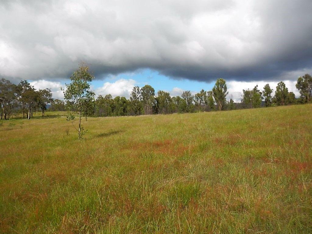 1354 Plains Station Road, Tabulam NSW 2469, Image 1