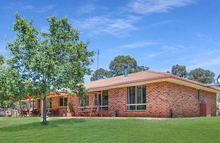 Picture of 2716 Beaconsfield Road, Wisemans Creek NSW 2795