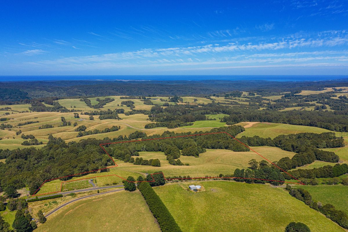 35 Beech Forest-Lavers Hill Road, Beech Forest VIC 3237, Image 0