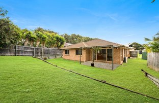 Picture of 24 Redstart Street, Upper Coomera QLD 4209