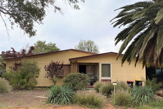 Picture of 22 Red Gum Street, RENMARK SA 5341