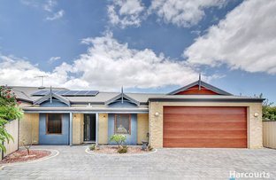 Picture of 26 Wishart Loop, Wanneroo WA 6065