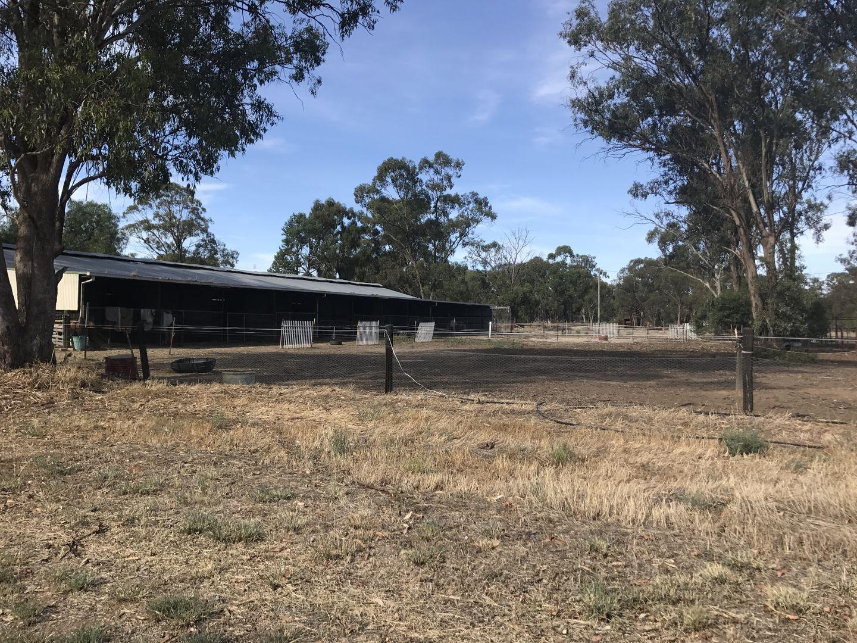 102-104 Barooga Street, Berrigan NSW 2712, Image 1