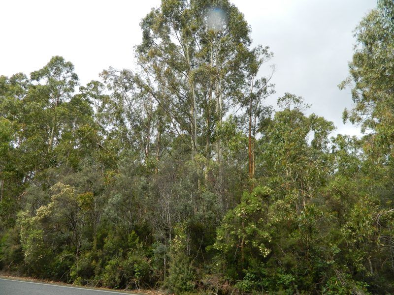 0 Gordon River Road, Tyenna TAS 7140, Image 2