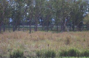 Picture of Leichardt Road, Mirani QLD 4754