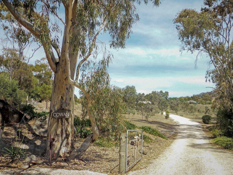 24 Morrison Road, Penwortham SA 5453, Image 1