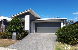 Picture of 39 Oriole Street, Griffin QLD 4503