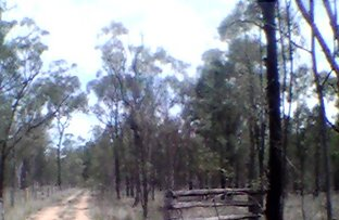 Picture of Leyburn QLD 4365