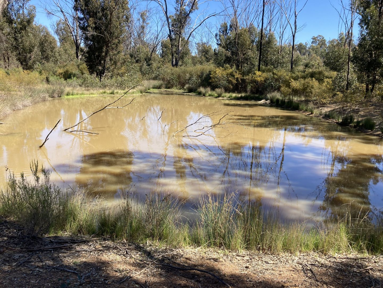 12392 GOLDEN HIGHWAY, Uarbry NSW 2329, Image 1
