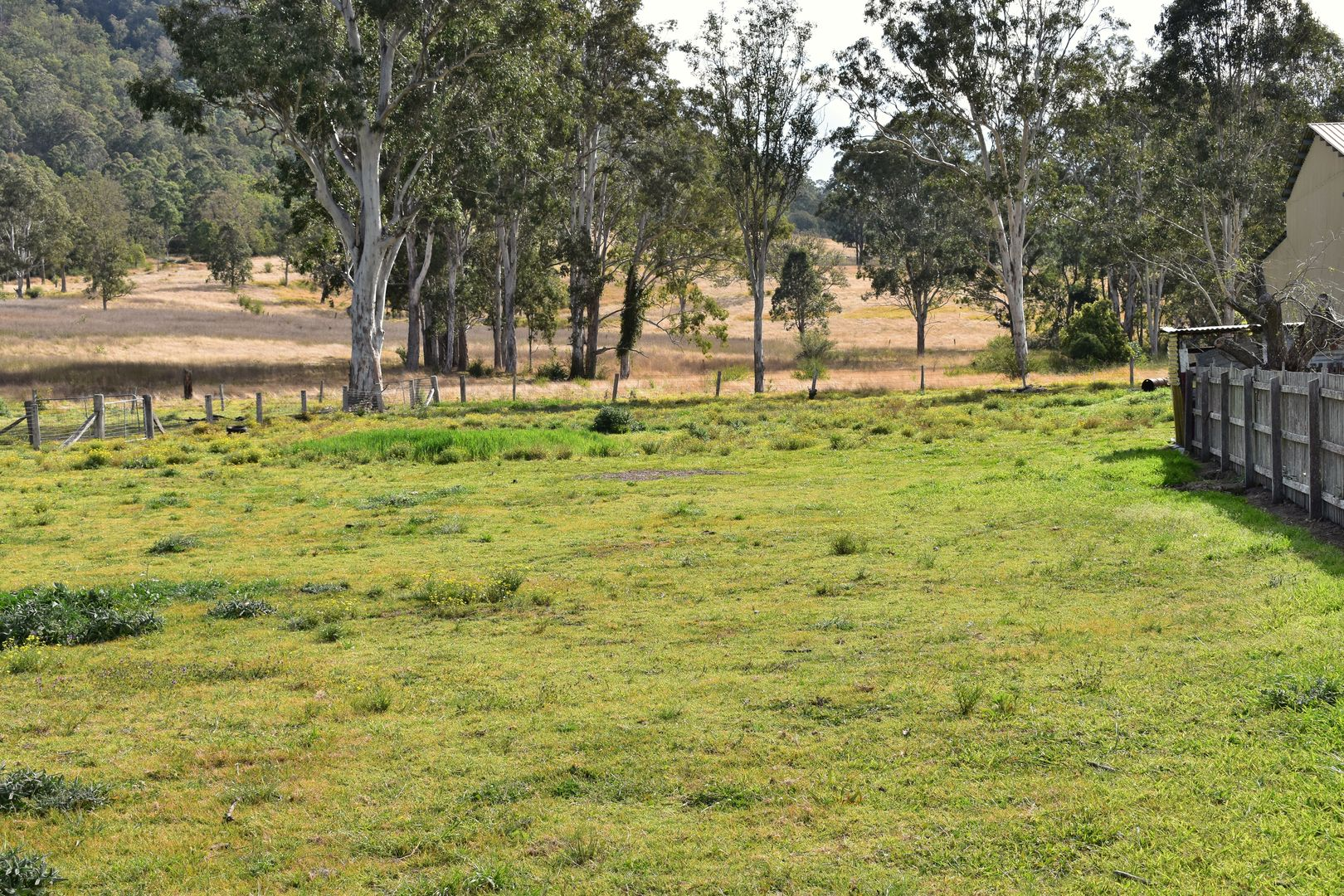 Lot 5 Boomi Street, Urbenville NSW 2475, Image 0