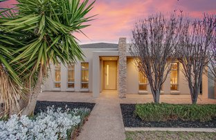 9 Catalina Street, Henley Beach South SA 5022