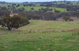 Picture of Lot 290 Yalbraith Road, Taralga NSW 2580