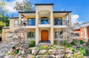Picture of 10 Holly Hock Court, Craigburn Farm SA 5051