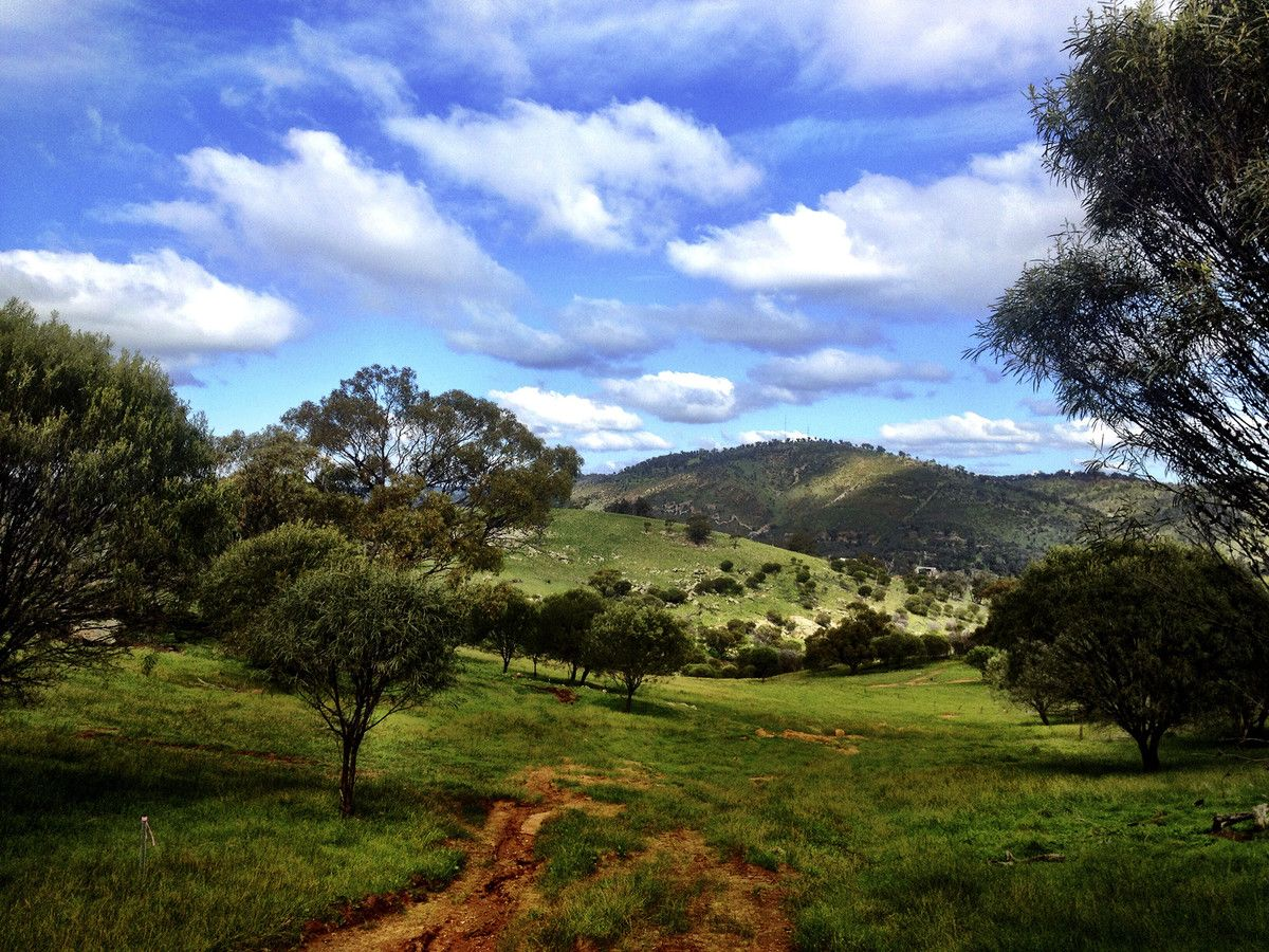 Lot 109/Nockdominie Road Whitfield Road, Toodyay WA 6566, Image 1