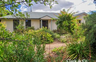 Picture of 3 Olympic Street, Mansfield VIC 3722
