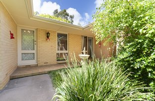 Picture of 29 Suffolk Road, Hawthorndene SA 5051