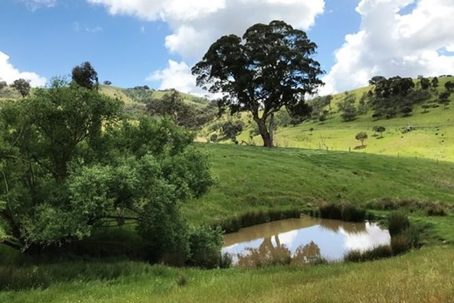 Picture of 595 DRY CREEK ROAD, BONNIE DOON VIC 3720