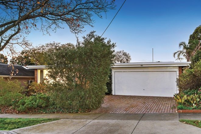 Picture of 19 Leura Grove, HAWTHORN EAST VIC 3123