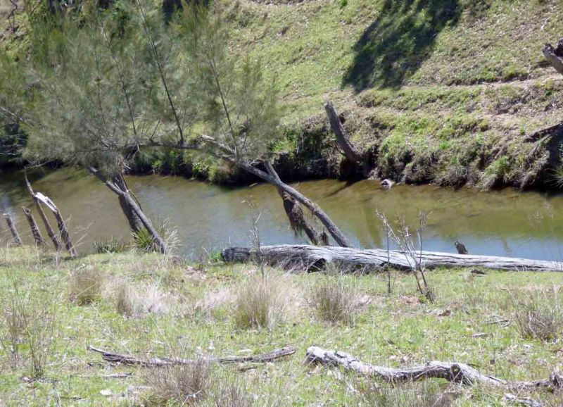 0 Voll Rd, Crows Nest QLD 4355, Image 2