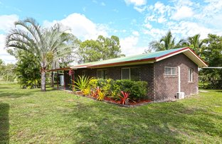 555 Cape Hillsborough Road, Ball Bay QLD 4741